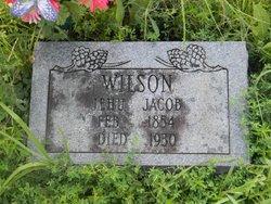 Jehu Jacob Wilson