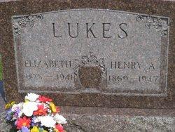 Henry A Lukes