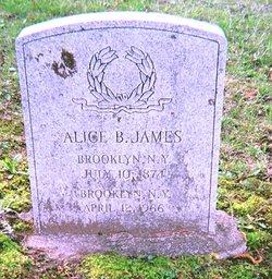 Alice Burton <I>Fonda</I> James