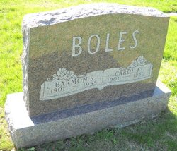 Carol Fern <I>Shank</I> Boles