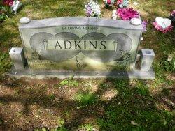 Andy J Adkins
