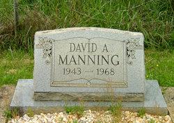 David A Manning