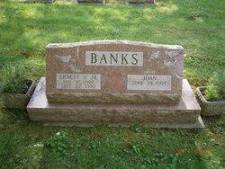 Ernest V Banks, Jr