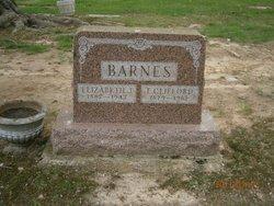 Elizabeth J Barnes
