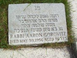 Rabbi Aaron Gorovitz