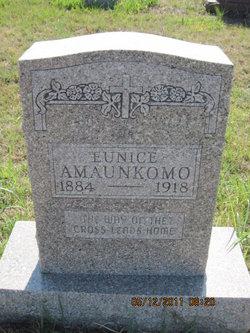 Eunice Amaunkomo