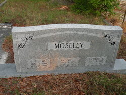 Richard Earl Moseley