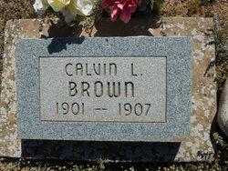 Calvin L. Brown