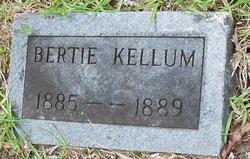 Bertie Florence Kellum