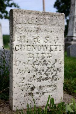 Lucretia Chenoweth