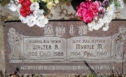 Walter Andrew Akin