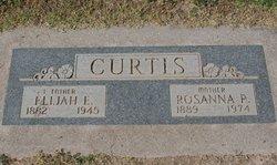 Rosanna P <I>Rogers</I> Curtis