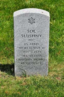 Sol Slushny
