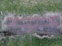 Carl Brandtner