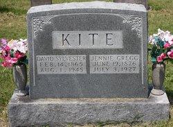David Sylvester Kite