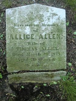 Alice <I>Tillinghast</I> Allen