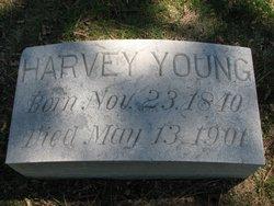 Harvey Otis Young