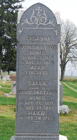 Susanna Usner