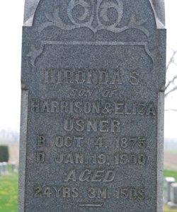 Hironda S, Usner