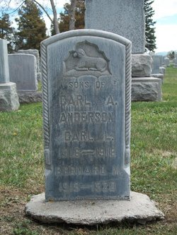 Bernard M Anderson