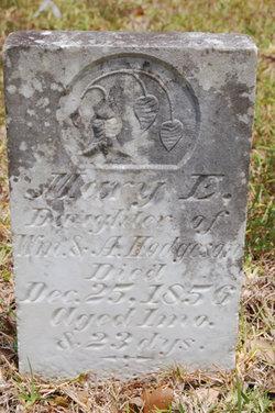 Mary E. Hodgeson