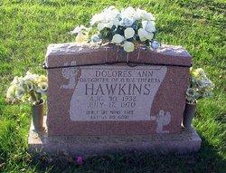 Dolores Ann Hawkins