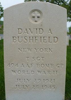 TSGT David A Bushfield