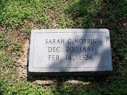 Sarah Catherine Kate Biard Norris 1851 1924 Find A Grave Memorial