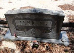 Irus B Jenkins