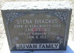 Stena <I>Juvan</I> Brackus