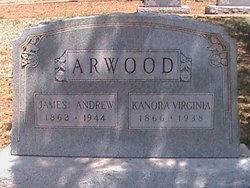 Knorah Virginia <I>Daniel</I> Arwood