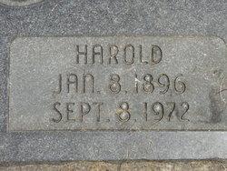 Harold Lewis Brandon