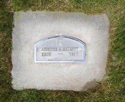 """Annette Amelie """"Nettie"""" <I>Pedersdatter</I> Halsett"""