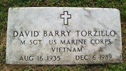 David Berry Torzillo