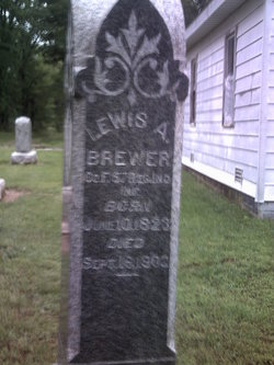 Lewis A Brewer