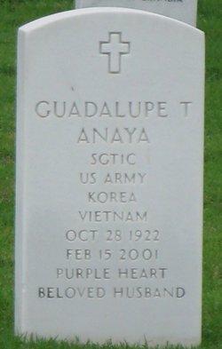 Guadalupe Trevino Anaya