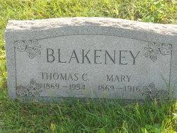 Mary A. <I>Sterner</I> Blakeney