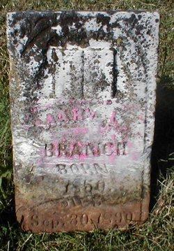 Mary L Branche