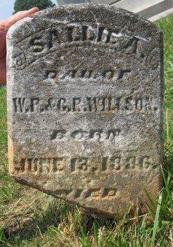Sallie A. Willson