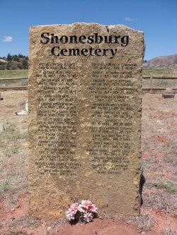 Shunesburg Cemetery