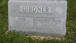David Girdner