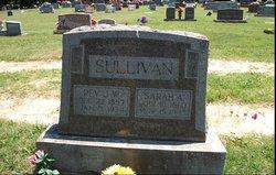 Sarah Ann Leva <I>Miller</I> Sullivan