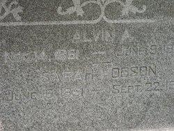 Sarah Jane <I>Hobson</I> Lincoln