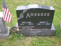 Mary C. <I>Molnar</I> Ambrose