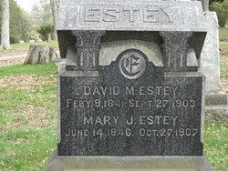 David M Estey