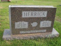 Hazel G Herrick