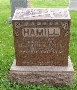 Elizabeth C <I>Quinn</I> Hamill