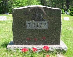 Albert M Tripp, Jr