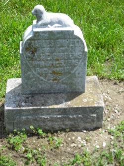 Charles Emmett Gibbens