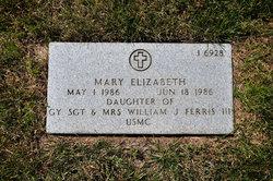 Mary Elizabeth Ferris